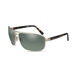 Okulary Wiley X HAYDEN Polarized Green Satin Gold Frame (ACHAY04)